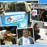 Goats on tour Soho Event